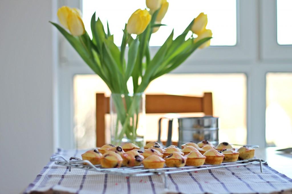Muffin krafnice sa borovnicama