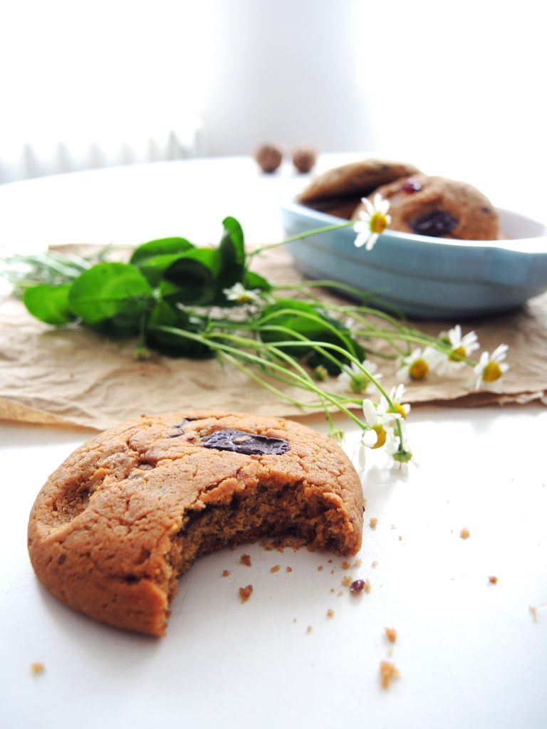 Čokoladni cookies sa brusnicom